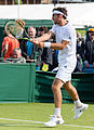 Gerald Melzer 4, 2015 Wimbledon Qualifying - Diliff.jpg