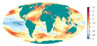Human impact on marine life