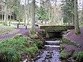 Gortin Glens Forest Park (8) - geograph.org.uk - 1711718.jpg