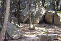 Graniti.jpg
