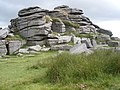 Great Staple Tor - geograph.org.uk - 1386572.jpg