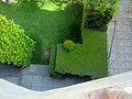 Green Garden - panoramio (2).jpg