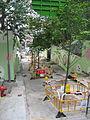 Greening Hong Kong (3801090214).jpg
