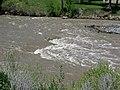 Greybull River (Meeteetse, Wyoming, USA) 8 (42167844684).jpg