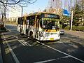 Gwacheon Public light bus 1.JPG
