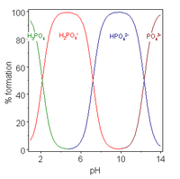 Acids with more than one ionizable hydrogen atoms are called polyprotic acids, and have multiple deprotonation states, also called species. This image plots the relative percentages of the different protonation species of phosphoric acid H 3 P O 4 as a function of solution p H. Phosphoric acid has three ionizable hydrogen atoms whose p K A's are roughly 2, 7 and 12. Below p H 2, the triply protonated species H 3 P O 4 predominates; the double protonated species H 2 P O 4 minus predominates near p H 5; the singly protonated species H P O 4 2 minus predominates near p H 9 and the unprotonated species P O 4 3 minus predominates above p H 12