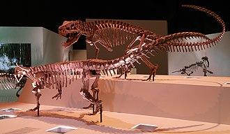 Pseudosuchia - Postosuchus (Rauisuchidae) and Desmatosuchus (Aetosauria)