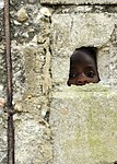 Haiti Relief Operations in Cap-Haitien DVIDS249665.jpg