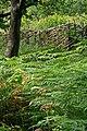 Hazel deer fence, Garston Wood - geograph.org.uk - 304547.jpg
