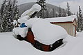 Heavy winter snows cover an old truck.jpg