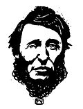 Henry David Thoreau by Vallotton.jpg