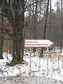 Herbram-Wald Eggetunnel Nordportal NAS.jpg
