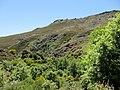 Hills in Parque Natural de Montesinho (5732585855).jpg