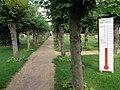 Hilton churchyard - geograph.org.uk - 1465321.jpg