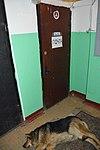 Himki Postal Office 141446 - landing.jpeg