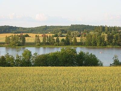 Vetefält vid Hirsjärvi