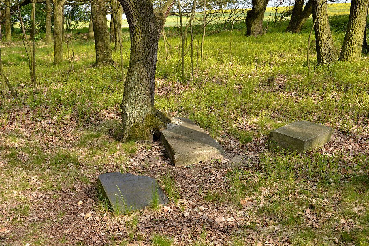 Hořenec 2017-05-03 Židovský hřbitov 2.jpg