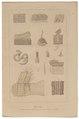 Homo sapiens - huid - 1700-1880 - Print - Iconographia Zoologica - Special Collections University of Amsterdam - UBA01 IZ19600087.tif