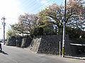 Hoshizaki Castle panoramic.jpg