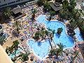 Hotel Flamingo Oasis - pool view.jpg