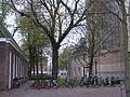 Huisjes in de Koorstraat in Alkmaar aan het voormalige kerkhof.JPG