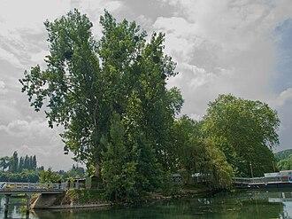 Samois-sur-Seine - Île du Berceau, where the Django Reinhardt festival takes place