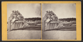 Indian Ice Tree and American Falls, by John B. Heywood 3.png