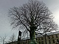 Inom Vallgraven, Göteborg, Sweden - panoramio - Torleif Ceder (98).jpg