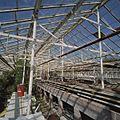 Interieur kas - Aalsmeer - 20404732 - RCE.jpg