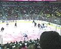 Iowa Chops Pink In The Rink (3314569715).jpg