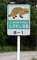 Iriomote yamaneko warning sign.jpg