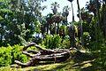 Jardin botanique (9305440190).jpg