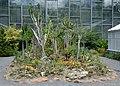 Jena - botanical garden 10 (aka).jpg