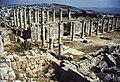 Jerash view.jpg
