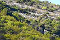 Jerusalem Hill (30186742345).jpg