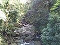 Jiménez, Río Grande 00745, Puerto Rico - panoramio.jpg