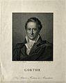 Johann Wolfgang von Goethe. Line engraving by C. Hess after Wellcome V0002295.jpg