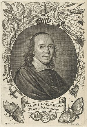 Jan Goedart - Jan Goedart, engraving by Reinier van Persijn after a painting by Willem Eversdijck, c. 1667-1668.