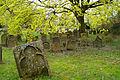 Judensand Worms alter jüdischer Friedhof Ansicht1.jpg