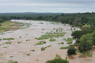 Olifants River (Limpopo) river in South Africa