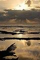 Kapoho Tide Pools, Waiopae, Pahoa (504371) (23306723079).jpg