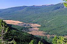 View of a marshy valley surrounded by forested mountains