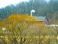 Kerl Farm - panoramio.jpg