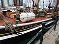 Kitty in South Dock 6615.JPG