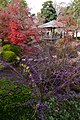 Koko-en Garden, Himeji02-r.jpg