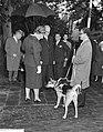 Koningin Juliana kijkt naar een blindegeleidehond, Bestanddeelnr 911-6204.jpg