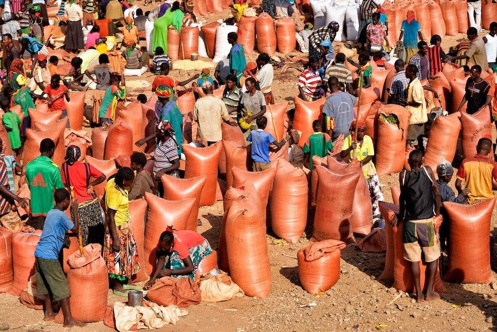 Konso Sorghum Market, Ethiopia (15221883581)