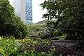 Kowloon Park, 2019 c.jpg
