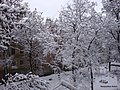 Kramatorsk, Donetsk Oblast, Ukraine - panoramio (2).jpg