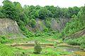 Kreis Pinneberg, Naturschutzgebiet Liether Kalkgrube 03.jpg